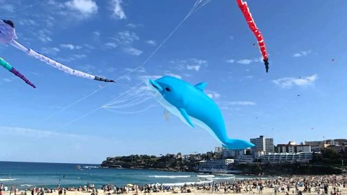 Bondi-beach-with-Giant-Kites-dolphin-kite-stingray-kite-dragon-kite-13th-sep-2015