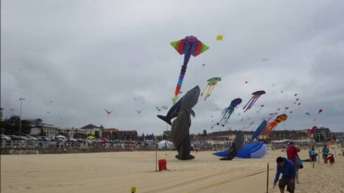 Festival-of-the-Winds-Bondi-Beach-Kites