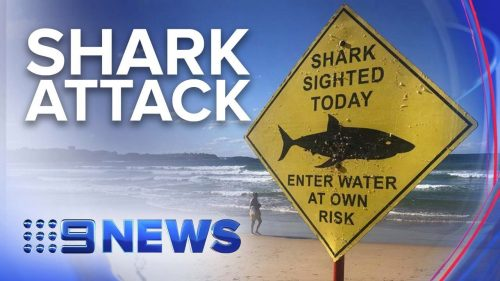 Man-in-hospital-after-suspected-shark-attack-near-Sydneys-Manly-beach-Nine-News-Australia