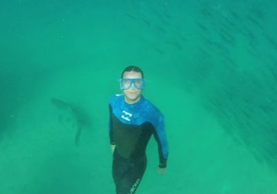 swimming-with-sharks-at-Bondi-Gopro-footage